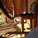 Whale Upper Deck
